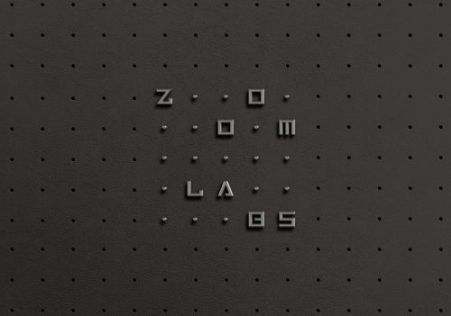 Zoom Labs